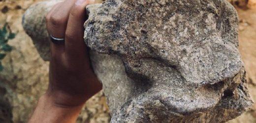 """""""Думали, що свійська тварина"""": В Україні знайшли рештки величезної доісторичної істоти"""