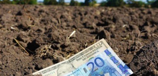 Cкільки коштуватиме гектар землі